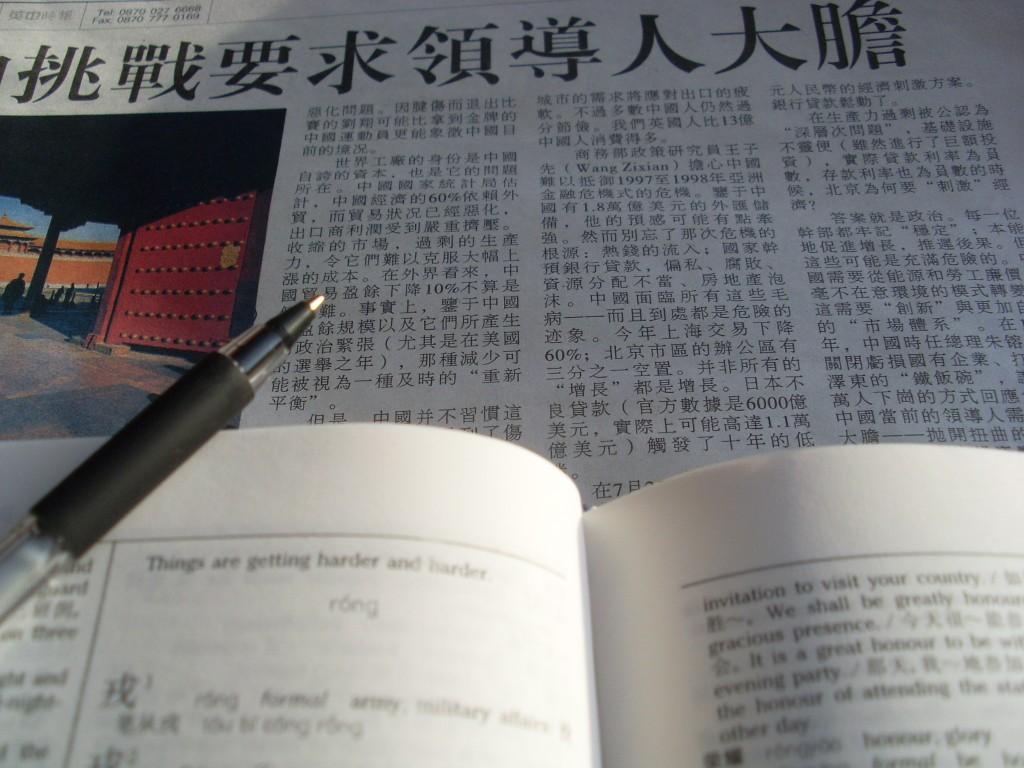 Prevajanje besedil in strokovnost
